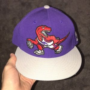 Purple-Mitchell & Ness-Raptors Hat